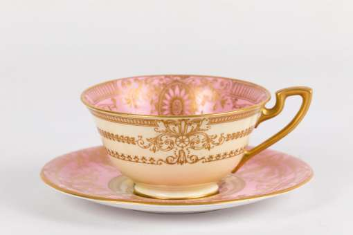 Royal Worcester Ernest Phillips Cup and Saucer