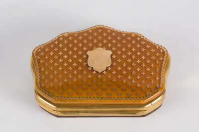 Blonde Tortoiseshell Purse